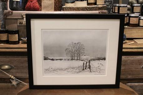 Gerry Halpin Framed Print